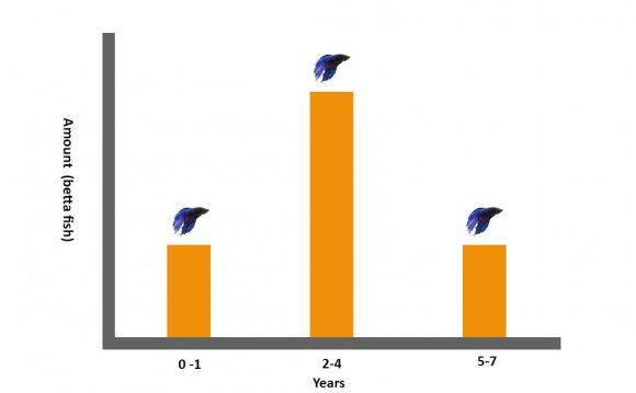 Betta Life Span Graph