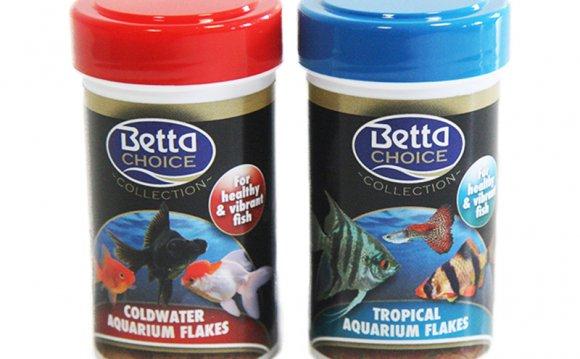 Betta Choice Aquarium Fish