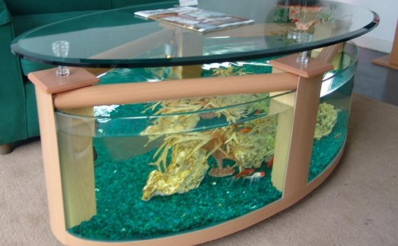 Unconventional fish tank ideas