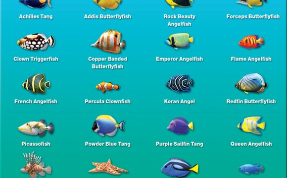Fish names for Betta