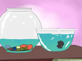 Image titled Clean a Betta Fish Bowl Step 16
