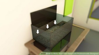 Image titled Make Your Fish Tank Look Professionally Designed Step 4